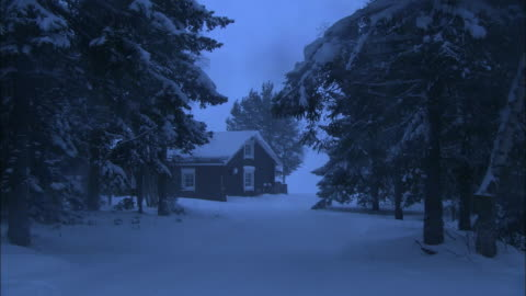 snow blankets the wooded drive toward a cabin in haparanda, sweden. - woodland stock videos & royalty-free footage