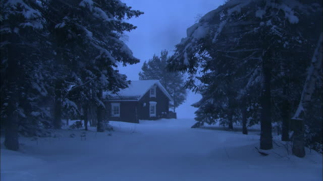 snow blankets the wooded drive toward a cabin in haparanda, sweden. - log cabin stock videos & royalty-free footage