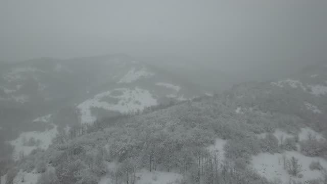 vídeos de stock e filmes b-roll de snow blizzard in a mountain - coberto de neve