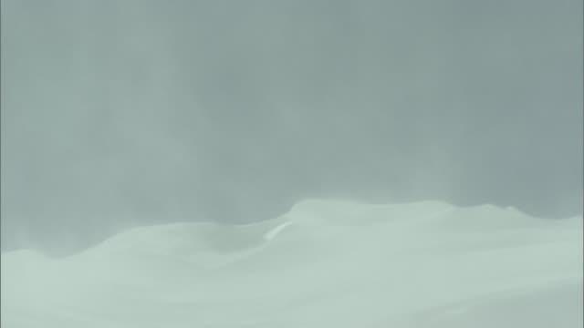 snow blizzard_Daisetsuzan Volcanic Group in winter, Hokkaid_
