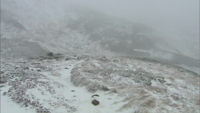 snow blizzard_daisetsuzan volcanic group in winter, hokkaid_ - daisetsuzan volcanic group stock videos and b-roll footage