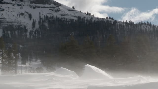 Snow blowing in Yellowstone National Park, in winter