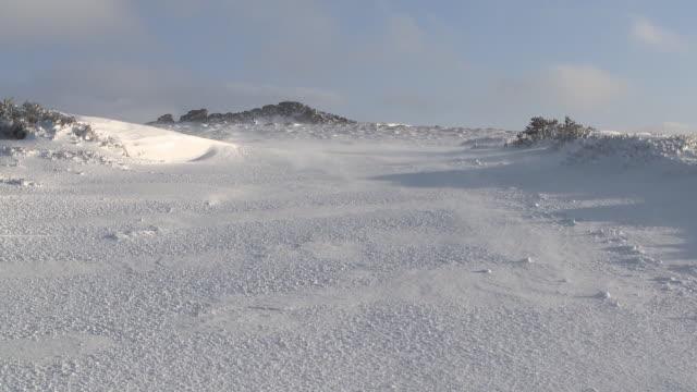 snow blowing over surface of icy landscape, dartmoor, uk - dartmoor stock videos & royalty-free footage