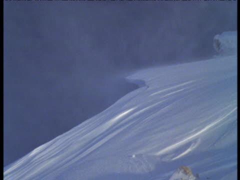 Snow blows off of ridge, Dundas Peninsular, Melville Island