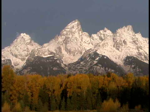 ms, snow capped mountain peaks, fall colored trees in foreground, grand teton national park, wyoming, usa - grand teton national park stock videos & royalty-free footage