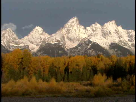 ms, snow capped mountain peaks, fall colored trees in foreground, grand teton national park, wyoming, usa - stationary process plate stock videos & royalty-free footage
