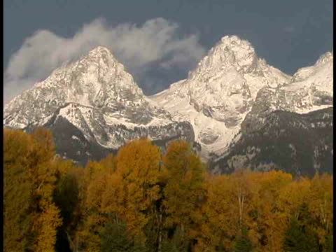 ms, snow capped mountain peaks, fall colored trees in foreground, grand teton national park, wyoming, usa - parco nazionale del grand teton video stock e b–roll