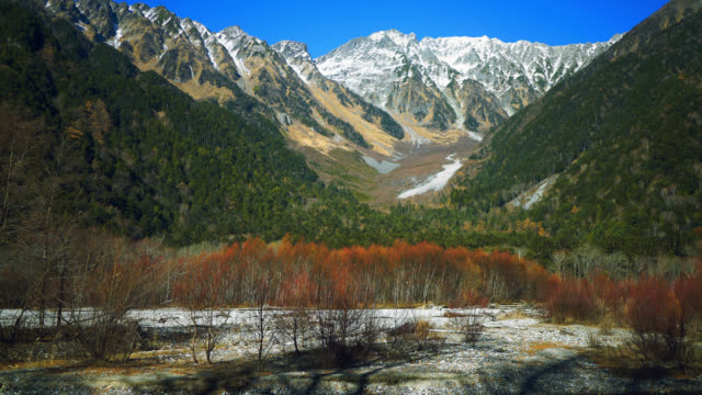 Snow capped mountains and green and red colored trees in autumn