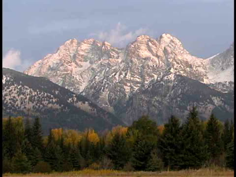 stockvideo's en b-roll-footage met ms, snow capped teton mountains, fall colored trees in foreground, grand teton national park, wyoming, usa - plate met stilstaande achtergrond