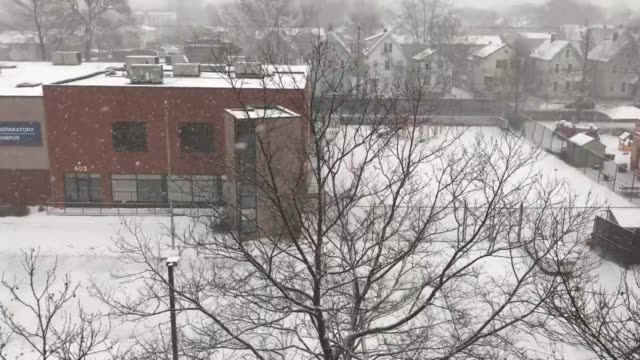 snow coming down in new haven's fair haven neighborhood. 2:15 pm tuesday. - ニューヘイブン点の映像素材/bロール