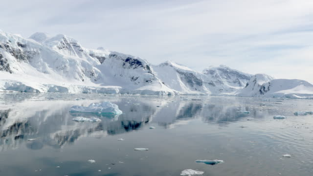 snow covered coast - antarctic peninsula stock videos & royalty-free footage