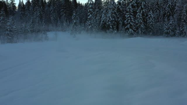 snow covered field and trees - 北チロル点の映像素材/bロール