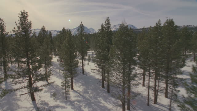 ws pov snow covered landscapes / mammoth lakes, california, usa - mammoth lakes video stock e b–roll