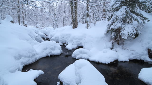 snow covered mountain river kleine ohe. kleine ohe, bavarian forest national park, bavaria, germany. - schneebedeckt stock-videos und b-roll-filmmaterial