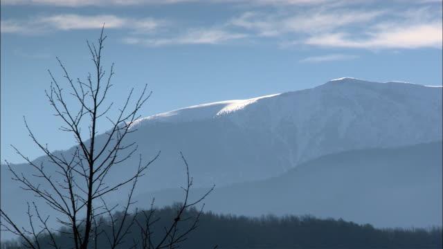 vídeos y material grabado en eventos de stock de ws snow covered mountains with bare tree in foreground / olympus, thessalia, greece - bare tree