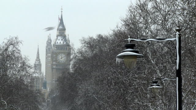 ms snow covered street lamp and trees, houses of parliament in background, london, united kingdom  - turmuhr stock-videos und b-roll-filmmaterial