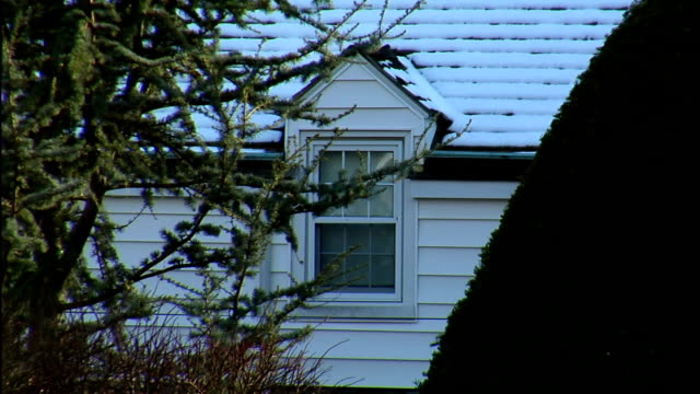 snow covers a roof and dormer near tree branches waving in the wind. - dacherker stock-videos und b-roll-filmmaterial