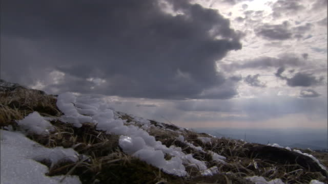 snow covers a scrub desert. - shrubland stock videos & royalty-free footage