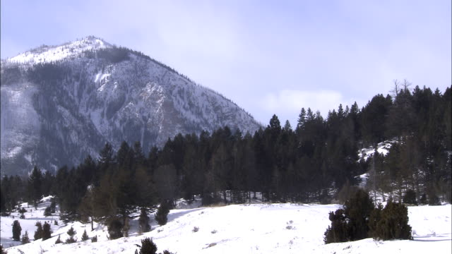 snow covers a wilderness mountain area. - evergreen stock videos & royalty-free footage