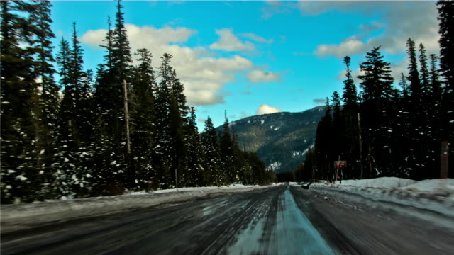 snow driving - telegraph pole stock videos & royalty-free footage