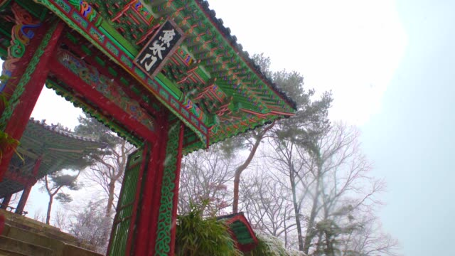 snow falling at eosumun gate in changdeokgung palace (unesco world heritage site in seoul) - seoul stock videos & royalty-free footage