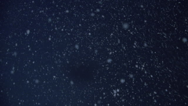 cu snow falling at night - neve video stock e b–roll