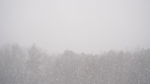 vídeos de stock, filmes e b-roll de neve caindo fundo na temporada de inverno nos eua - chuva congelada