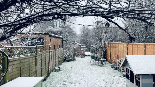 stockvideo's en b-roll-footage met sneeuw die in achtertuin van het huis van de voorsteden van londen valt - koud