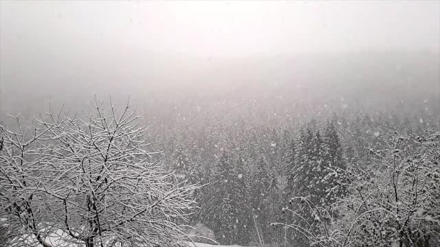 vidéos et rushes de neige tombant au ralenti - mountain range