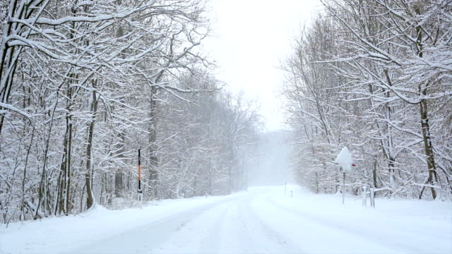 snow falling on country road - snow cornice stock videos and b-roll footage