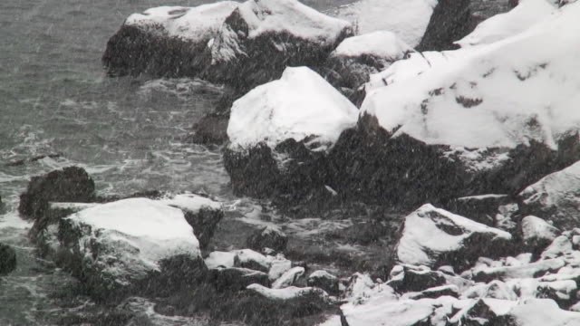 cu snow falling on rocks in sea during blizzard / reine, lofoten, norway - peter snow stock videos & royalty-free footage