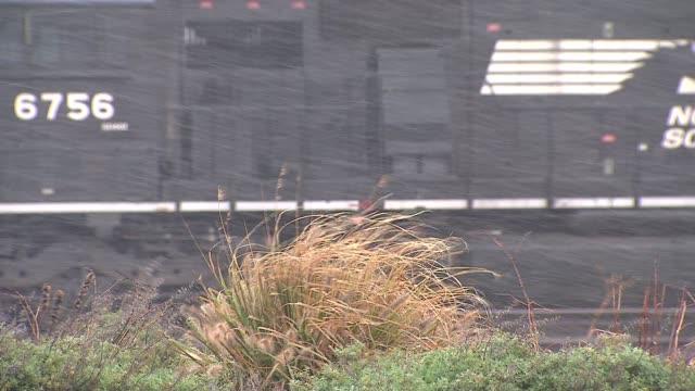 vídeos de stock, filmes e b-roll de wgn snow falling on shrubbery on november 11 2013 in hammond indiana - chuva congelada