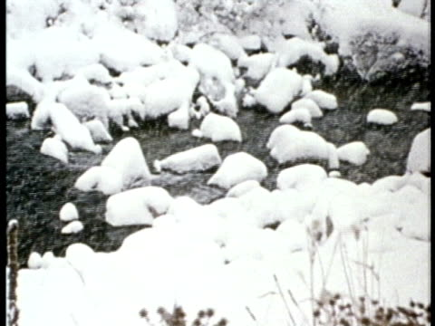 1975 MONTAGE MS CU Snow falling over babbling brook / United States / AUDIO
