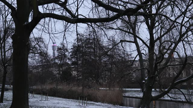 snow falls in regents park on february 9, 2021 in london, england. heavy snow brings a week of freezing temperatures across many parts of the uk and... - snow stock videos & royalty-free footage