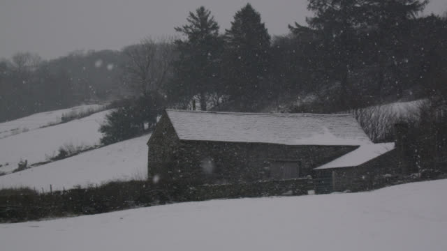 Snow falls onto barn and farmland, Cumbria, England