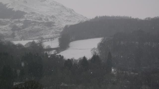 snow falls onto woods and mountain, cumbria, england - snowflake stock videos & royalty-free footage