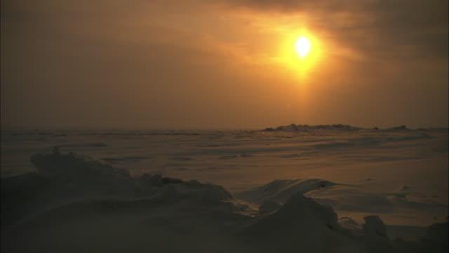 Snow falls over the Alaskan tundra at sunset.