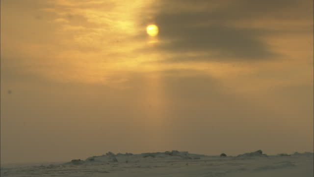 Snow falls over the Alaskan tundra.