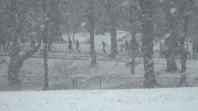 vidéos et rushes de snow field then slow zoom in to runners in race with heavy snow falling central park nyc - salmini