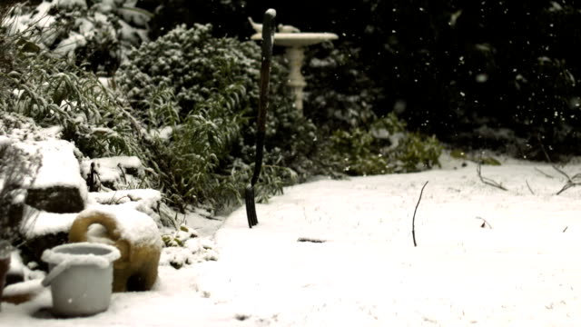 snow flakes falling in garden, slow motion pan shot - snowing stock videos & royalty-free footage