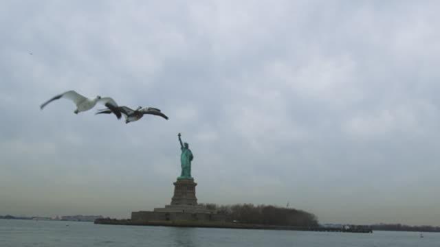 vídeos de stock, filmes e b-roll de pan la snow goose family fly over camera with statue of liberty in the background - estátua