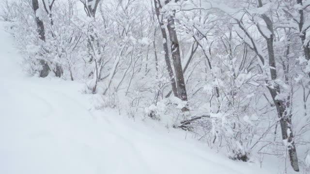 snow hill - 秋田県点の映像素材/bロール