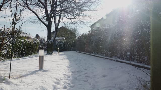 stockvideo's en b-roll-footage met snow in garden - koud