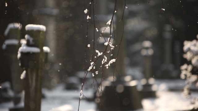 snow in southern england 1 - cemetery stock videos & royalty-free footage