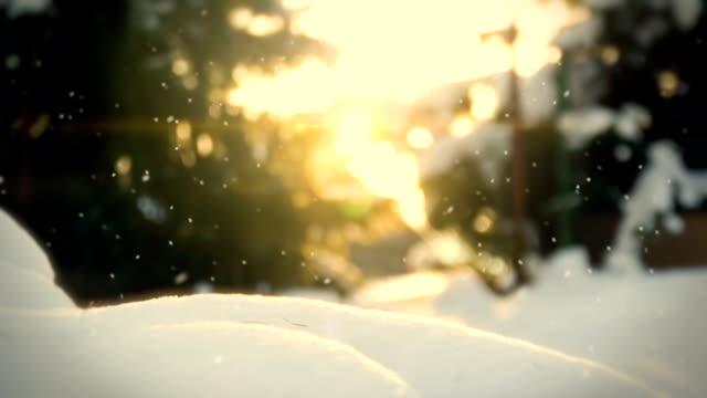 Snow in the garden loop