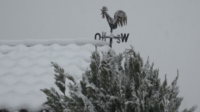 snow is falling at weather vane - meteorology stock videos & royalty-free footage