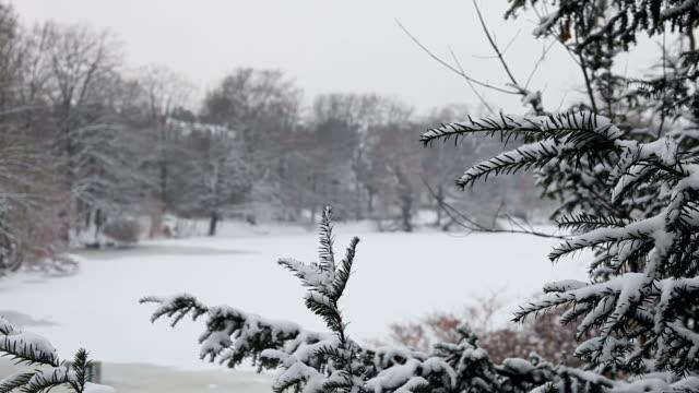 Paisagem de Neve