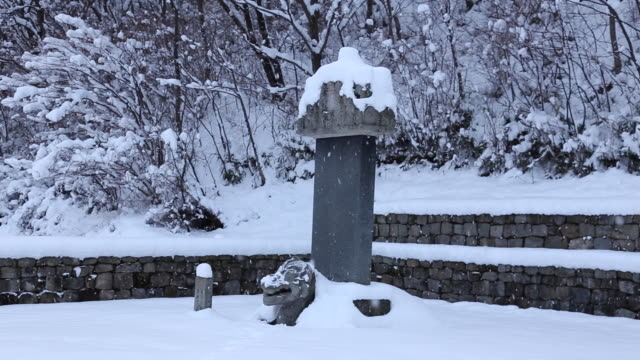 snow scene of beopinkuksaboseungtapbi(a tower and a monument at a tomb, korea treasure 106) at bowonsa temple site(korea historic place 316) - rappresentazione di animale video stock e b–roll