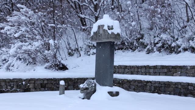 vídeos de stock, filmes e b-roll de snow scene of beopinkuksaboseungtapbi(a tower and a monument at a tomb, korea treasure 106) at bowonsa temple site(korea historic place 316) - representação de animal