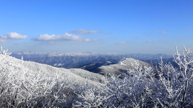 Snow Scene of Taegisan Mountain
